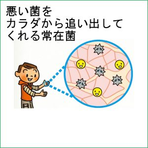 バイ菌をカラダから追い出してくれる手指の『バイ菌バリア』