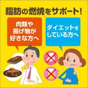 脂肪の燃焼をサポート!