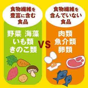 肉類など動物性食品には含まれていない食物繊維