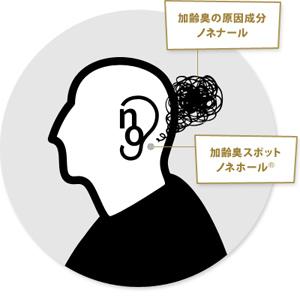 ノーガードの加齢臭スポット『耳の裏』