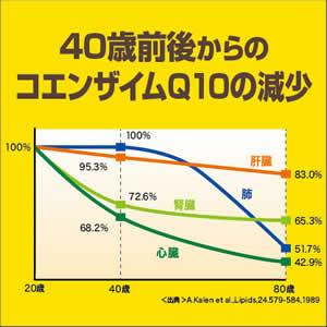 40歳前後から減少するコエンザイムQ10!