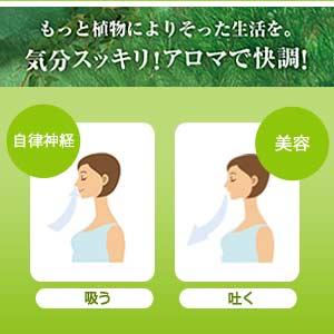 呼吸法と植物のチカラ