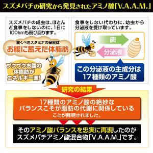 スズメバチの研究から発見されたアミノ酸