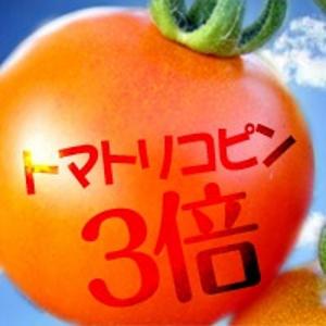 完熟トマトはリコピンの量が3倍!