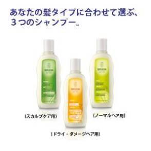 あなたの髪タイプに合わせて選ぶ、3つのシャンプー。<br>