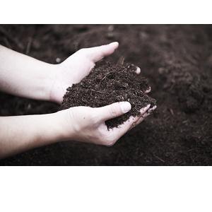 畑から元気にこだわる安心品質1