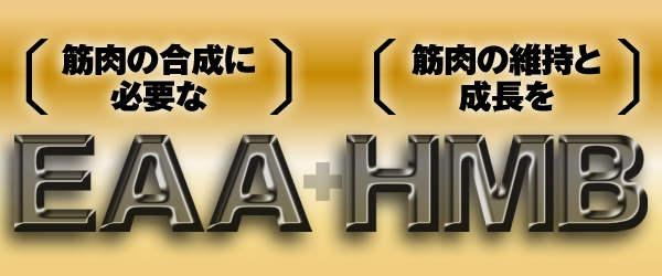 EAA+HMB