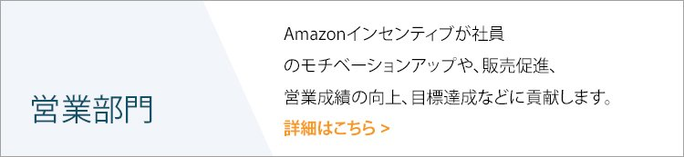 Amazon Incentivess | 営業チーム
