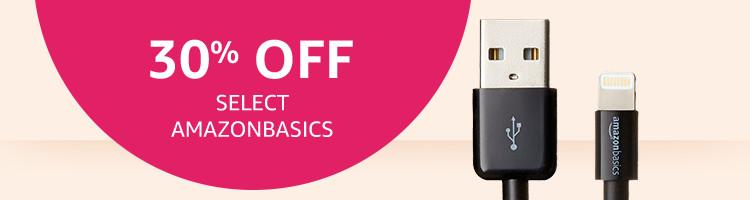 30% Off Select Amazon Basics Accessories