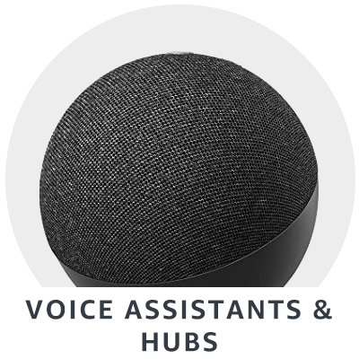 Voice Assistants and Hubs