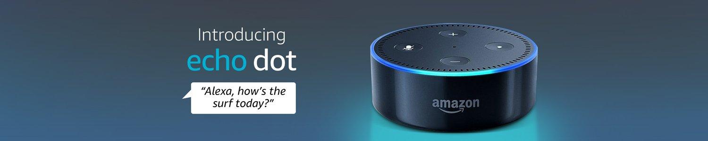 Echo Dot. Alexa, how's the surf