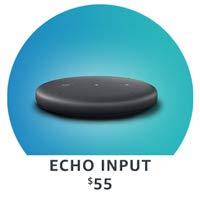 Introducing Echo Input