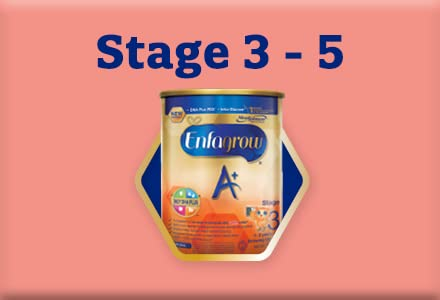 Stage 3 - 5