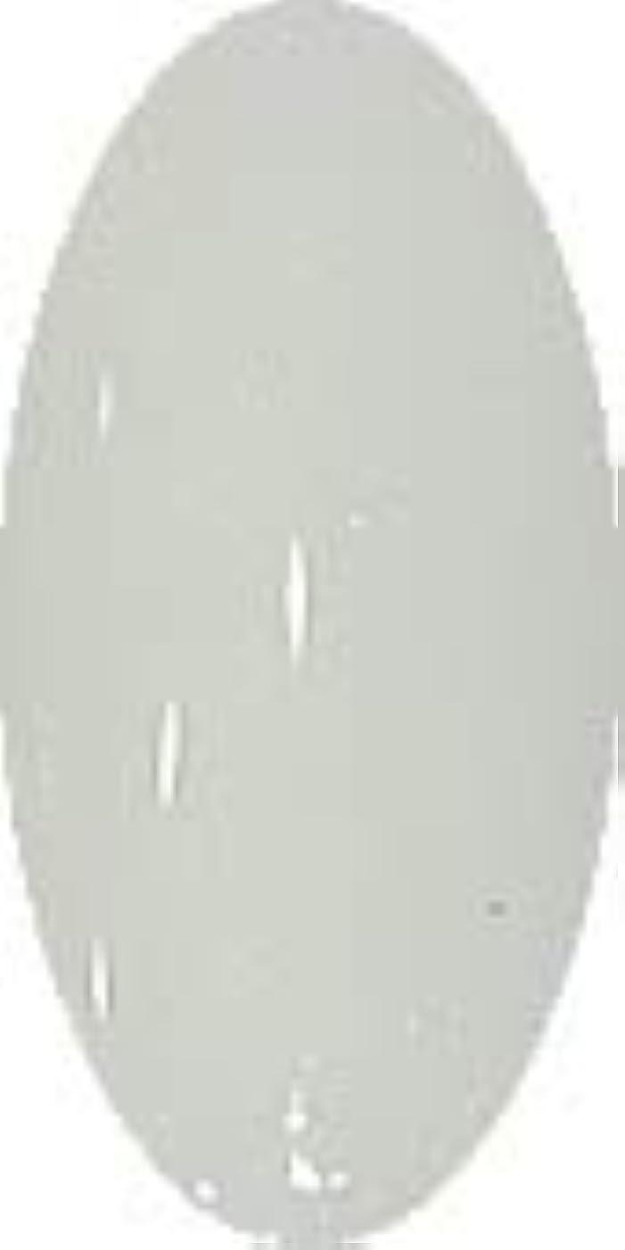 塩辛いブローホールボイラーグラスネイルカラー☆SNOW☆【グリーンスノー】CP137