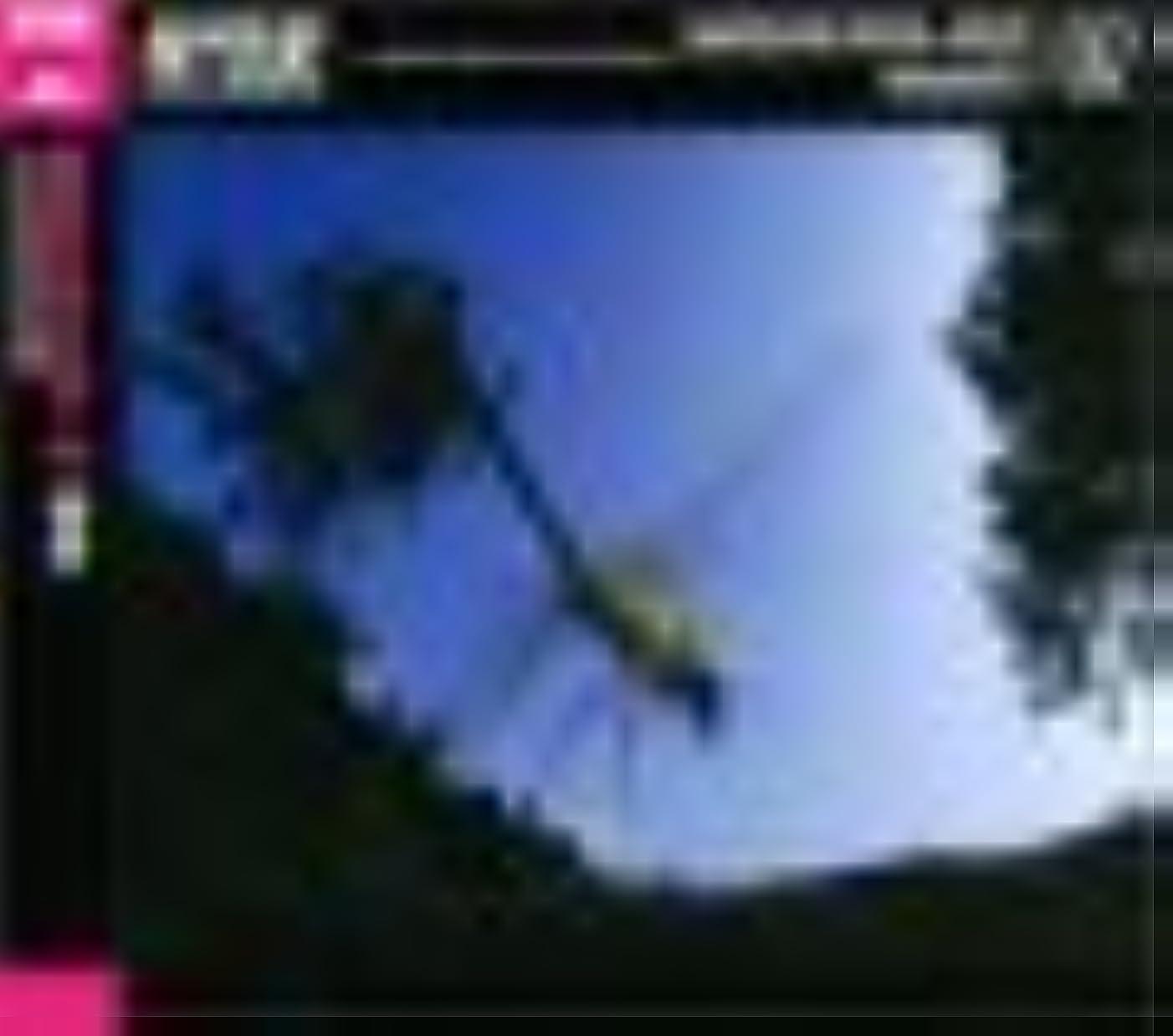 炭水化物コカインパッケージ驚異的な虫の世界 02 蜻蛉