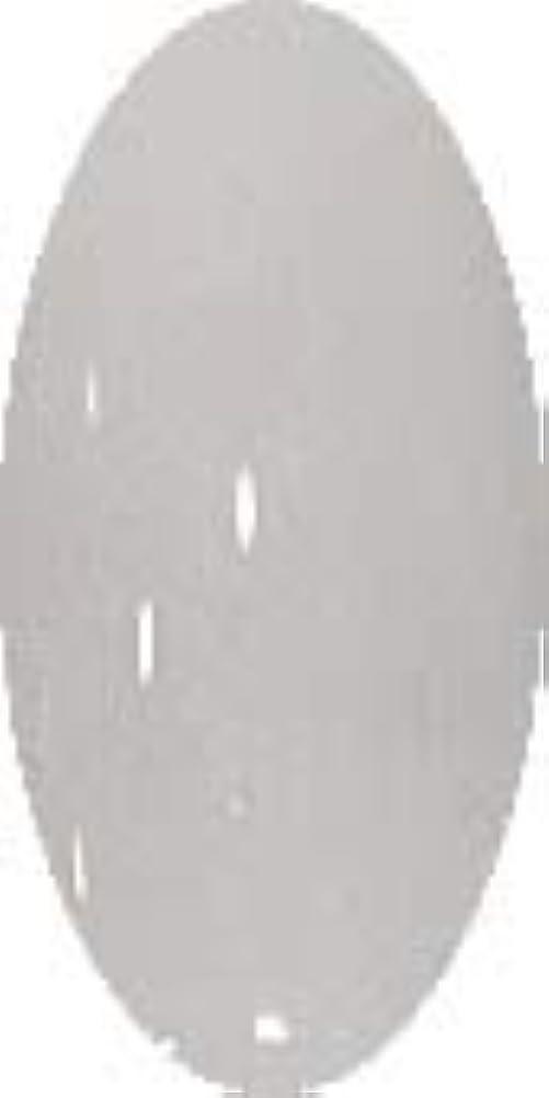 グラスネイルカラー☆SNOW☆【グレイスノー】CP138
