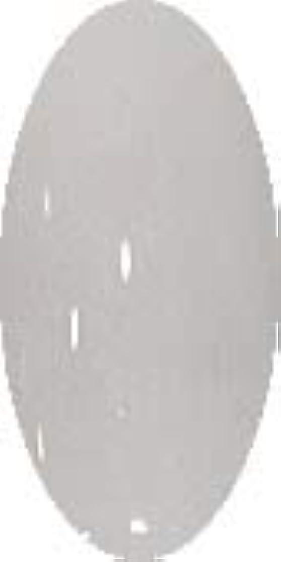 運命粘液紳士グラスネイルカラー☆SNOW☆【グレイスノー】CP138