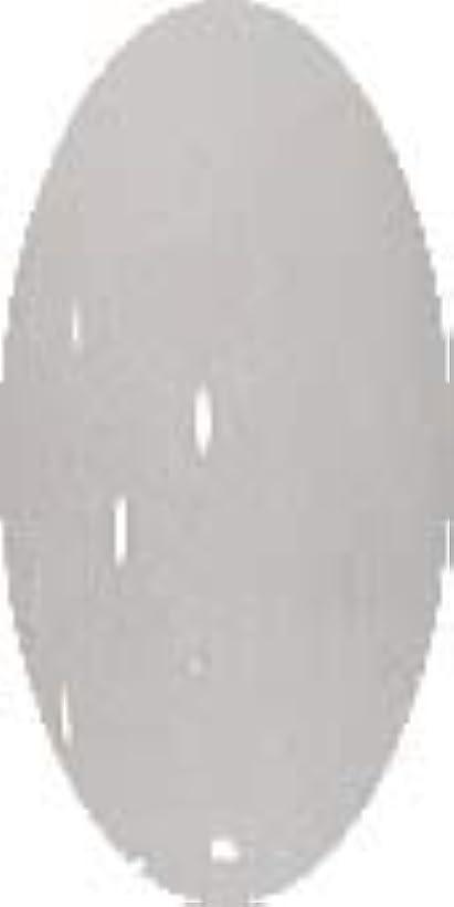 落胆する知覚できる酸化物グラスネイルカラー☆SNOW☆【グレイスノー】CP138