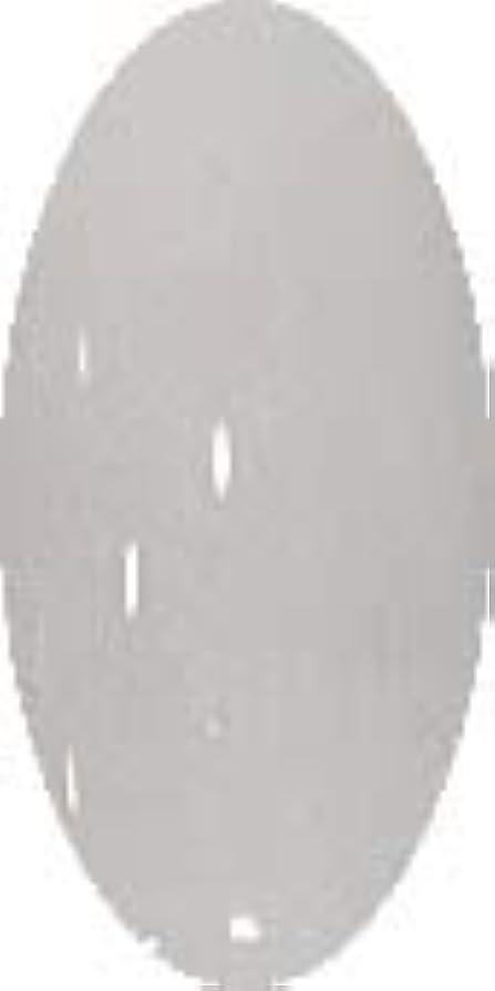告発フェローシップ大通りグラスネイルカラー☆SNOW☆【グレイスノー】CP138
