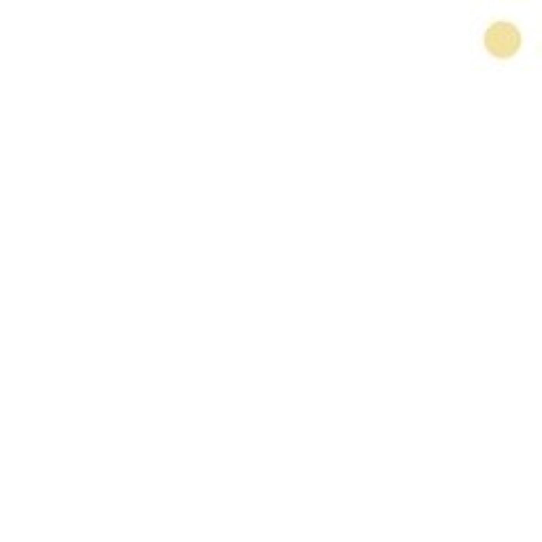 ラジエーター安定チューリップ【カバーマーク】ジャスミーカラー パウダリーファンデーション #YN10 (レフィル)