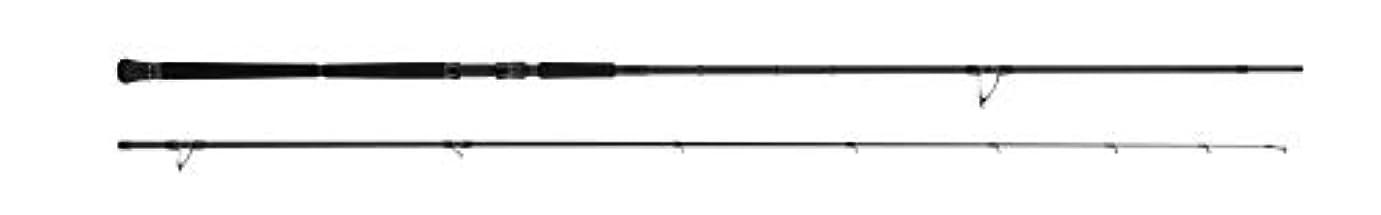 退却テキスト取り消すアブガルシア(Abu Garcia) ショアジギングロッド PRM ロックショアゲーム SPRSS-1162MH-PG 釣り竿 2019モデル