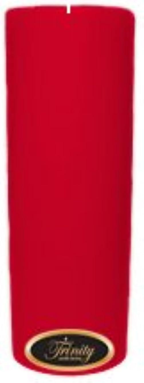 パラダイス同性愛者私たち自身Trinity Candle工場 – Holiday Cheer – Pillar Candle – 3 x 9