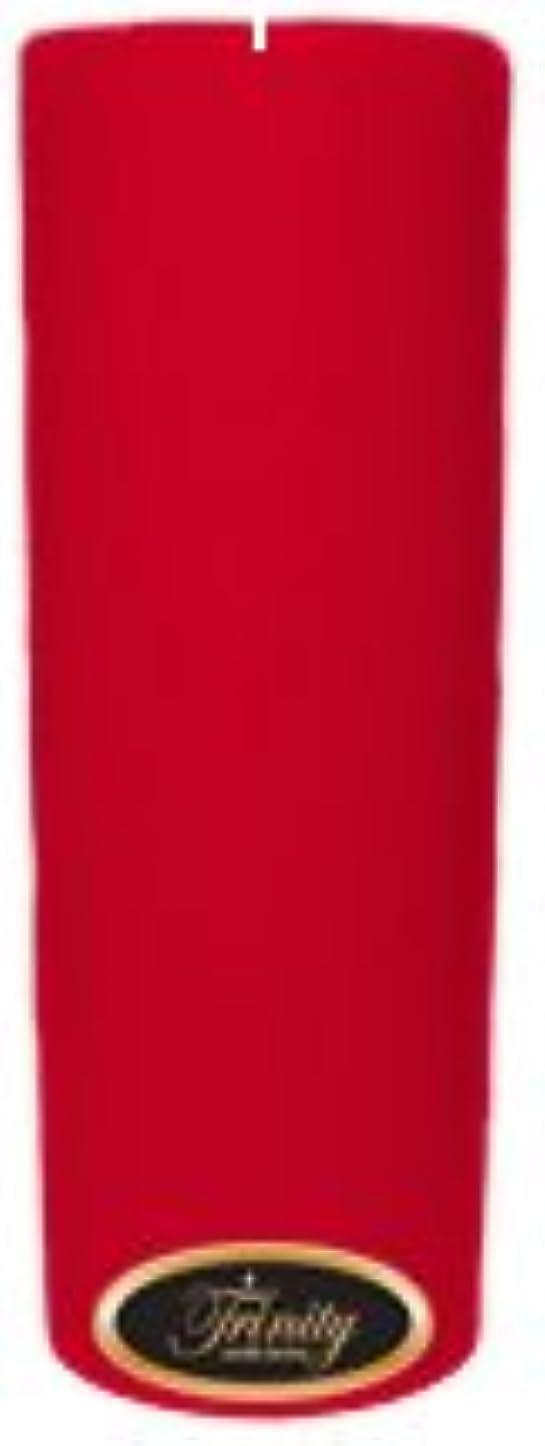 永遠に繁殖食器棚Trinity Candle工場 – Holiday Cheer – Pillar Candle – 3 x 9