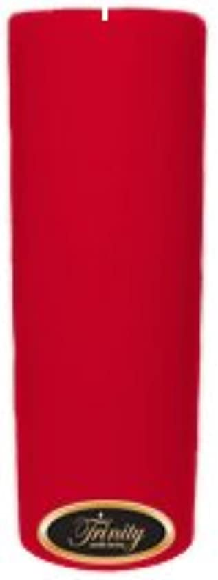 気絶させる歩行者ガムTrinity Candle工場 – Holiday Cheer – Pillar Candle – 3 x 9