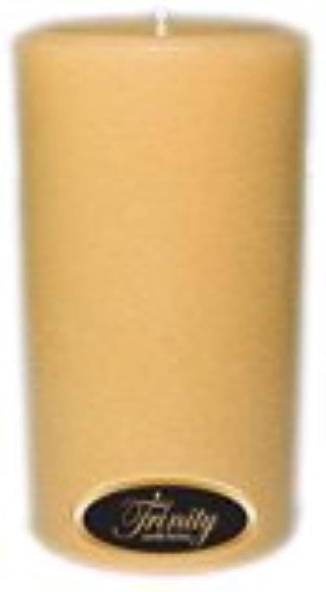 シングルフォーカス適切にTrinity Candle工場 – レザー – Pillar Candle – 3 x 6