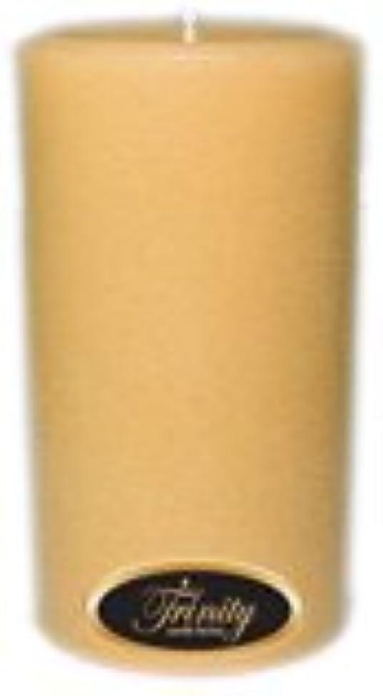 不快なバラバラにする周波数Trinity Candle工場 – レザー – Pillar Candle – 3 x 6