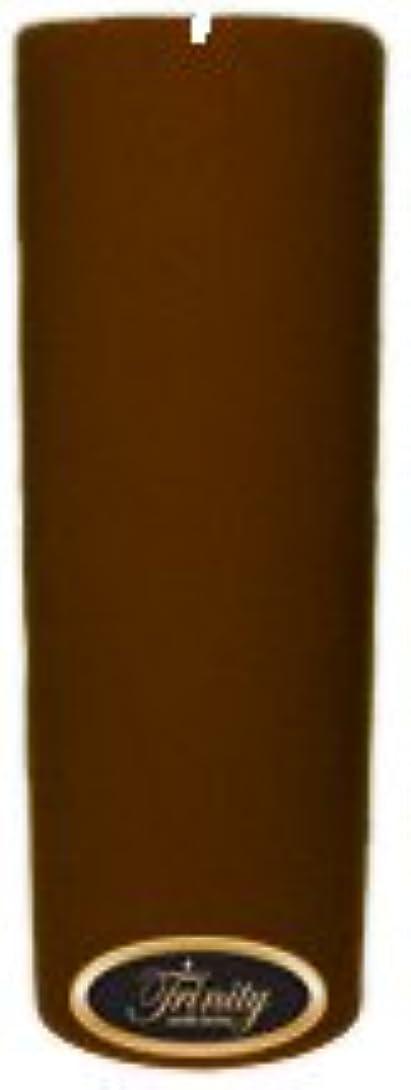 憎しみレンズ露出度の高いTrinity Candle工場 – Gingerbread – Pillar Candle – 3 x 9