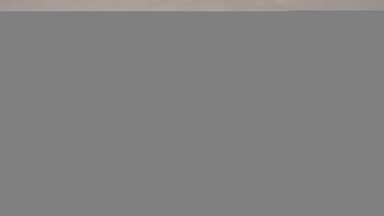 有効なカロリー食器棚ベアエッセンシャル ベアミネラル オリジナル ファンデーション SPF15 - # ゴールデン ミディアム ( W20 ) 8g/0.28oz