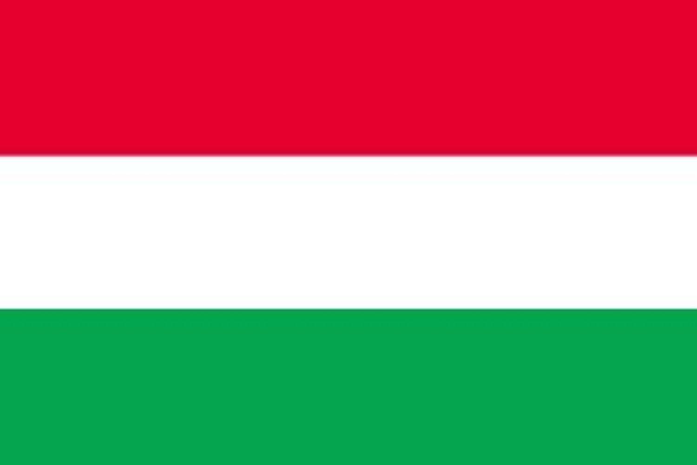 世界の国旗 ハンガリー 国旗 ポータブルフラッグ [ 25×37.5cm ポール付き手旗 高級テトロン製 ]