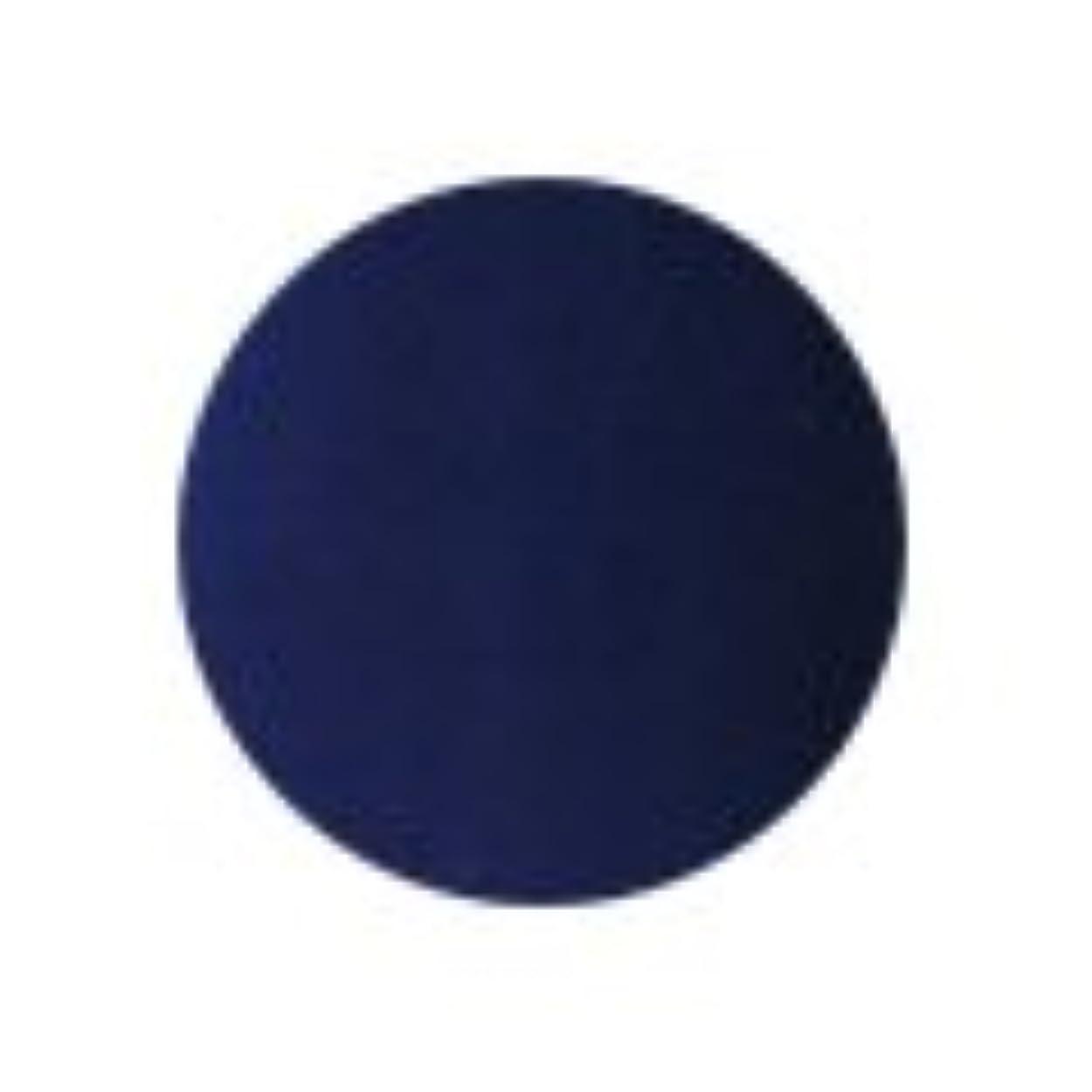 モニター金曜日時間★PREGEL(プリジェル) スーパーカラーEX 4g<BR>PG-SE259 ネイビー