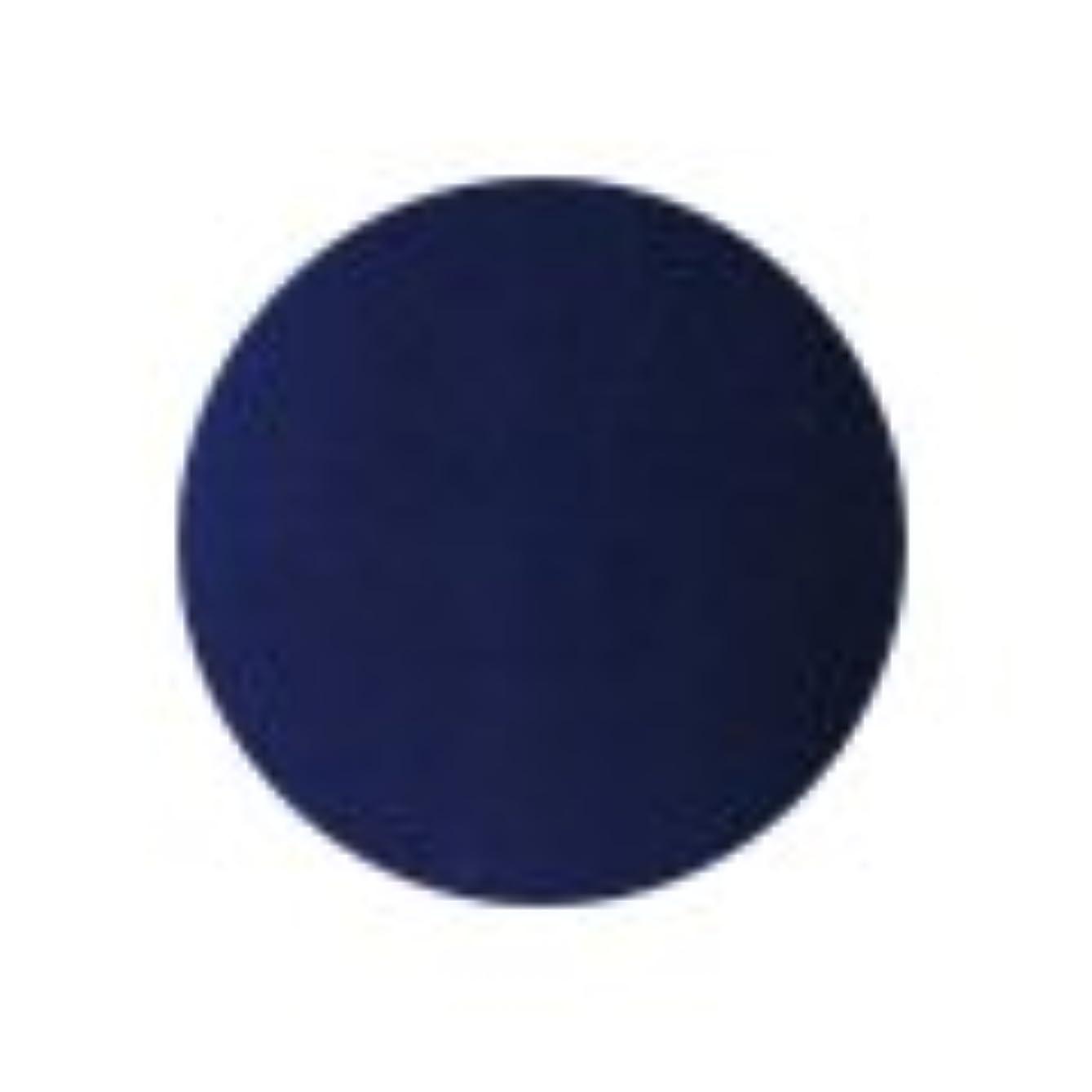 上へメモ茎★PREGEL(プリジェル) スーパーカラーEX 4g<BR>PG-SE259 ネイビー