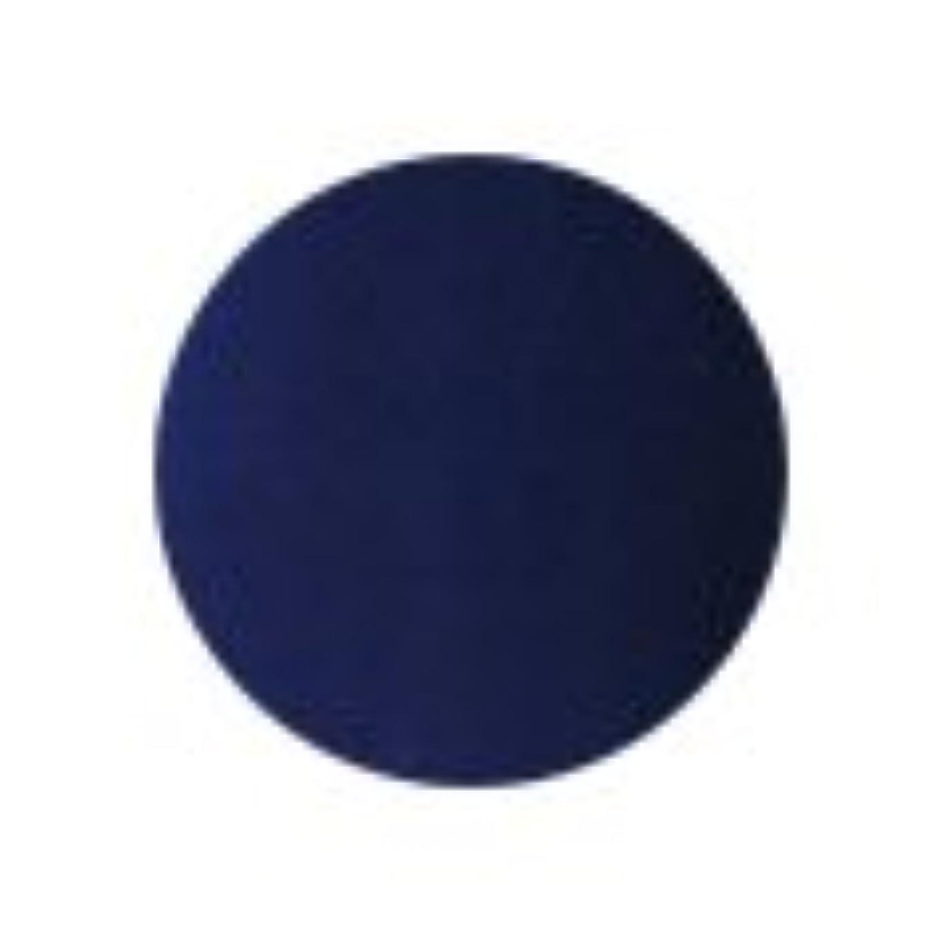 恐怖症消費者印をつける★PREGEL(プリジェル) スーパーカラーEX 4g<BR>PG-SE259 ネイビー