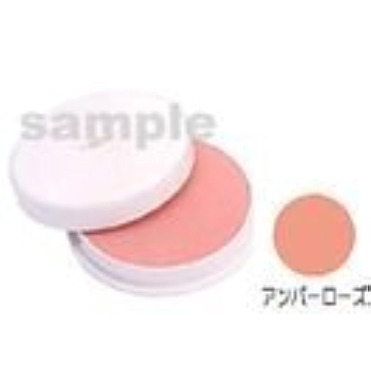 学習パズル断片三善 フェースケーキ アンバーローズ