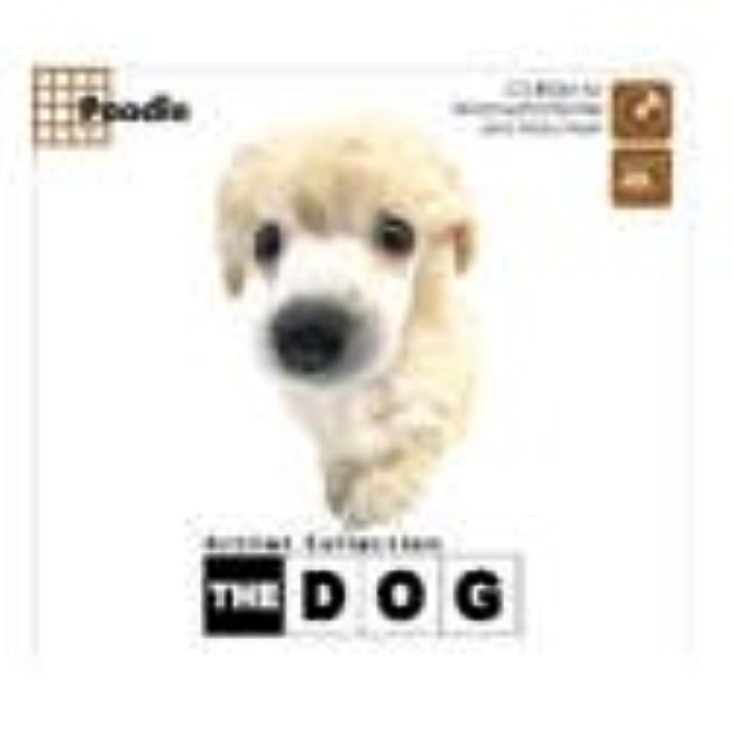 真夜中罪むしろTHE DOG ~ Poodle