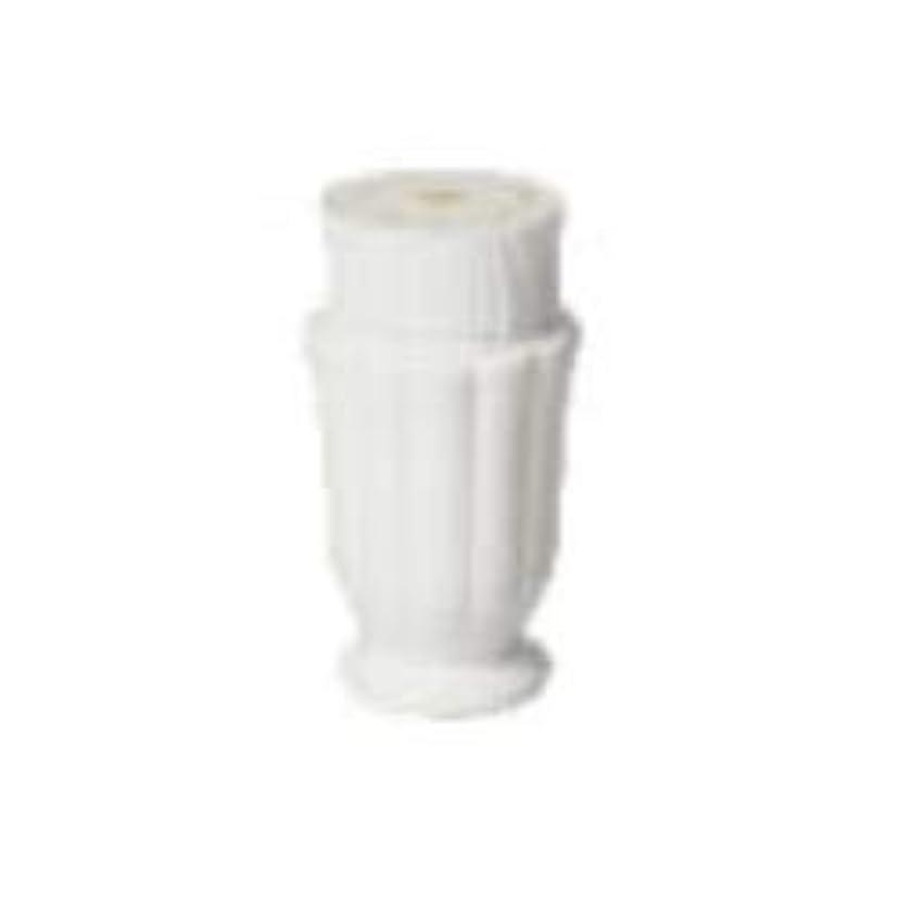 チャットブランチミントハリウッド アクシアストロベリークリーム(60g)