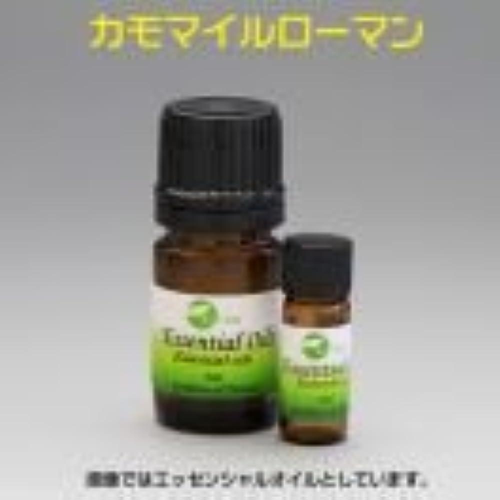 上昇ブロー魅惑的な[エッセンシャルオイル] 甘いリンゴに似た香り カモマイルローマン 5ml