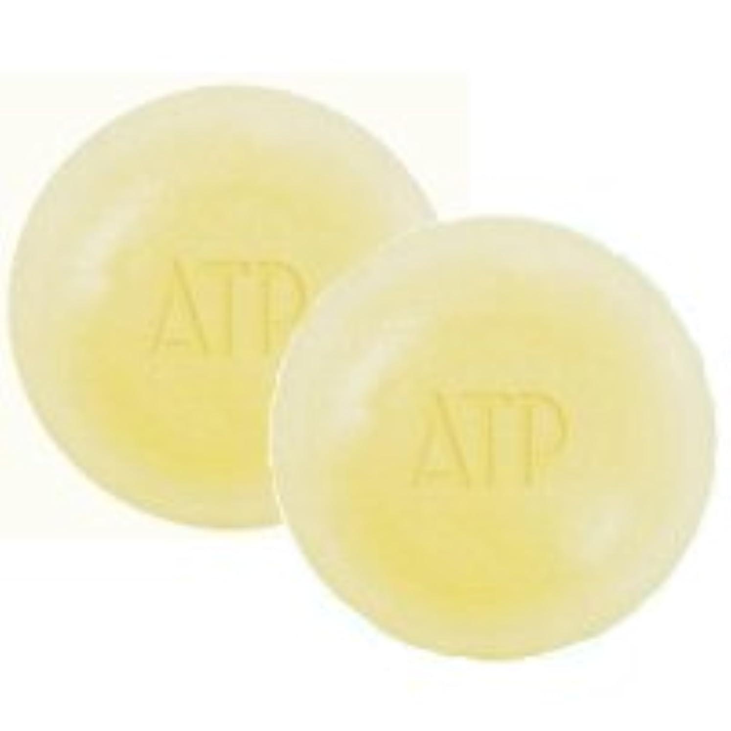 スキル地上で暴行ATPデリケアソープ 100g ケース付 2個セット