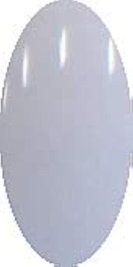 識別農奴マザーランドグラスネイルカラー☆LIGHT☆【ファンテンブルー】CP169