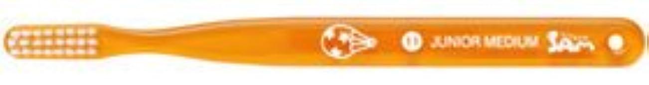 獣ドラムベスビオ山【サンデンタル】【歯科用】サムフレンド ベーシック #11 ジュニア?ミディアム 30本【歯ブラシ】【ふつう】6色アソート