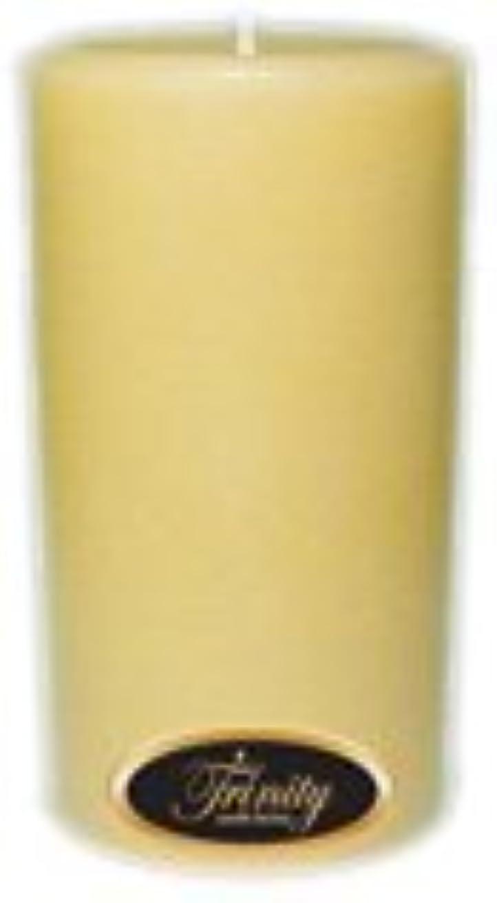 ロボットサラミショップTrinity Candle工場 – Vanilla Spice – Pillar Candle – 3 x 6