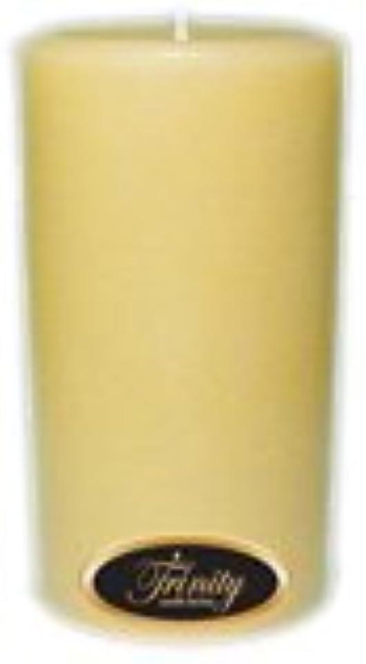 無効アパル麻酔薬Trinity Candle工場 – Vanilla Spice – Pillar Candle – 3 x 6