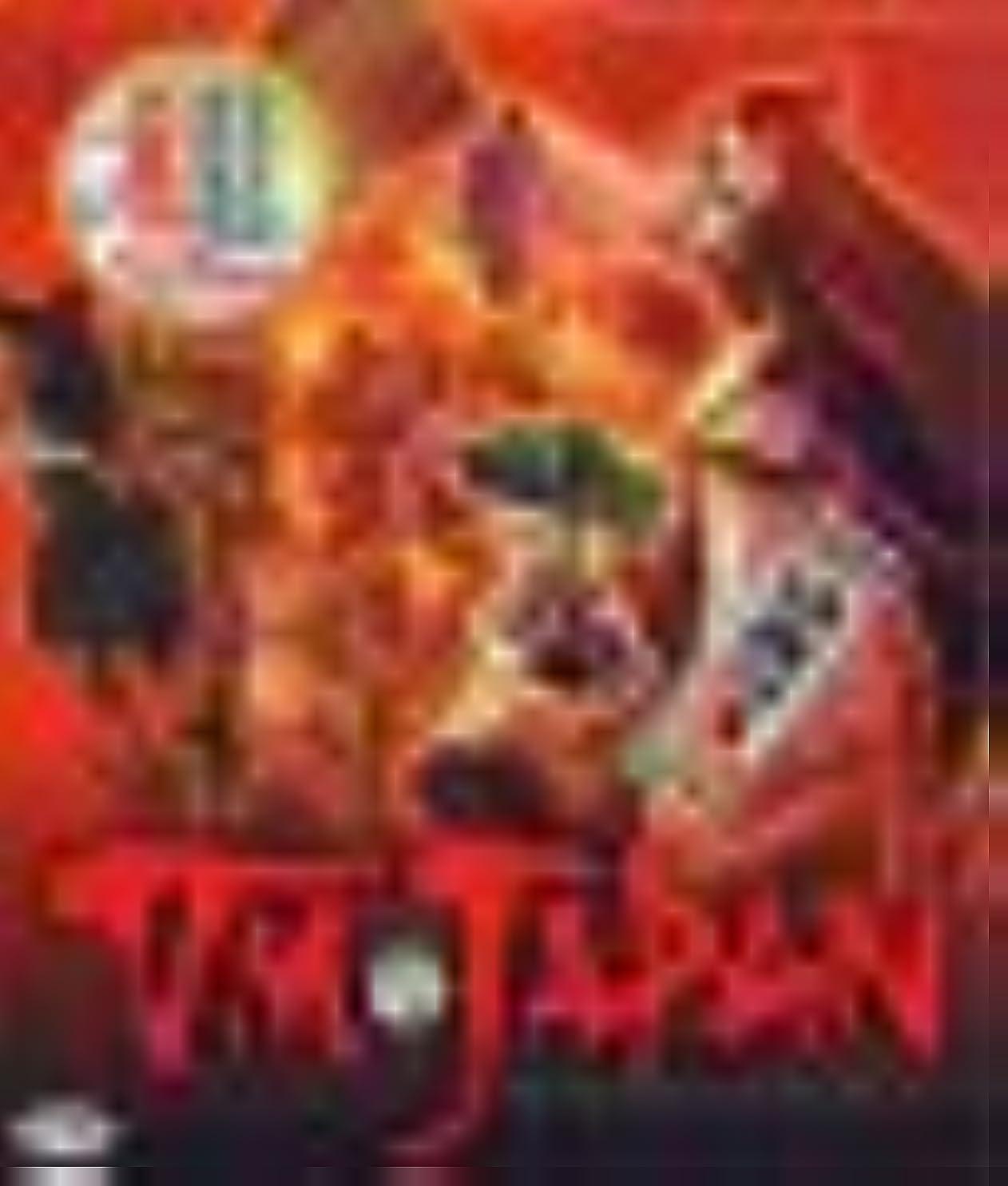 確実キー落花生VM JAPAN 初回限定版 CD-ROM版