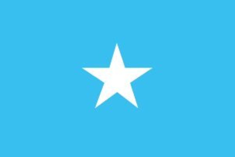 世界の国旗 ソマリア 国旗 [120×180cm 高級テトロン製]