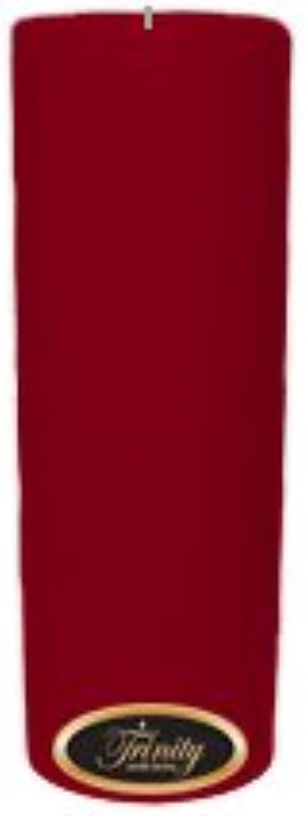 注入する物語すごいTrinity Candle工場 – Cinnamon Swirl – Pillar Candle – 3 x 9