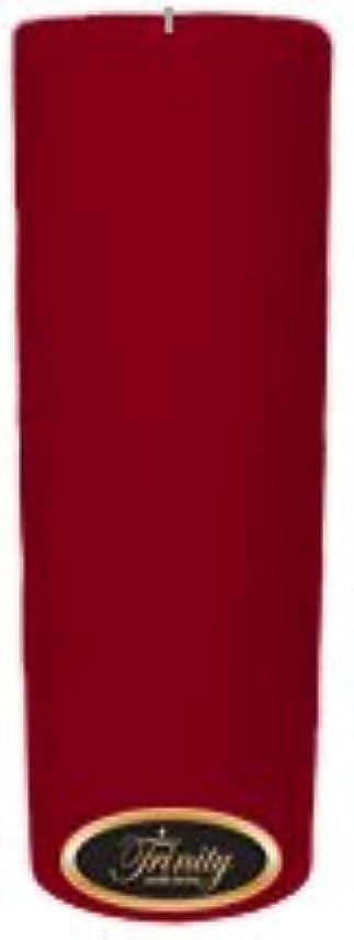 巨大マークダウン乱闘Trinity Candle工場 – Cinnamon Swirl – Pillar Candle – 3 x 9