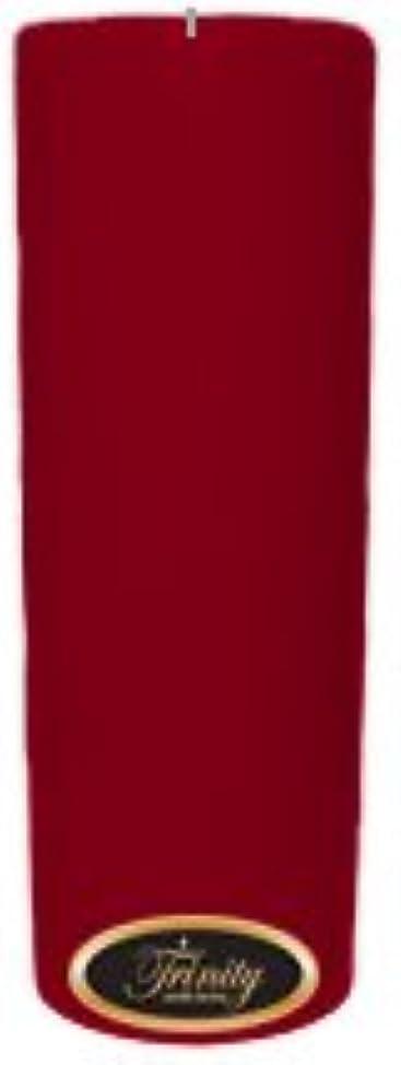 シャーク整理するヒューマニスティックTrinity Candle工場 – Cinnamon Swirl – Pillar Candle – 3 x 9